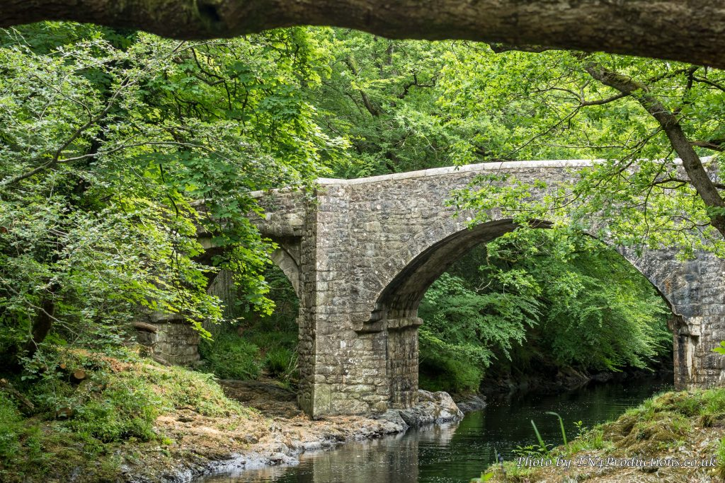 River Dart, Devon